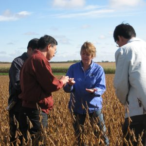 Woman showing soybeans to men in soybean field