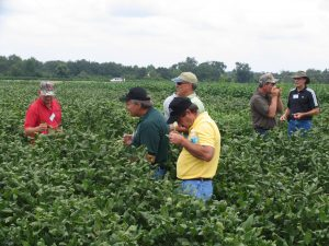 Men in field performing checkoff
