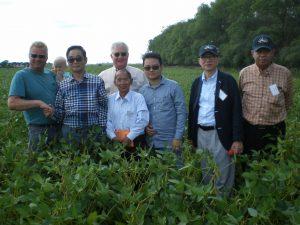 Men standing in a soybean field, two shaking hands